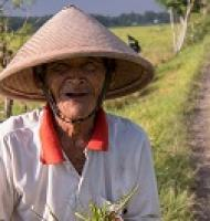 An old man in a field wearing a triangle-shaped hat